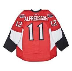 Mike Fisher Warm-up Worn Jersey Auction