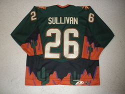Sullivan Game-Worn Jersey Auction