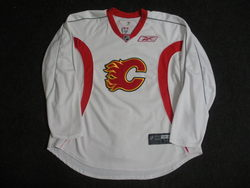 Phaneuf Practice Worn Jersey Auction